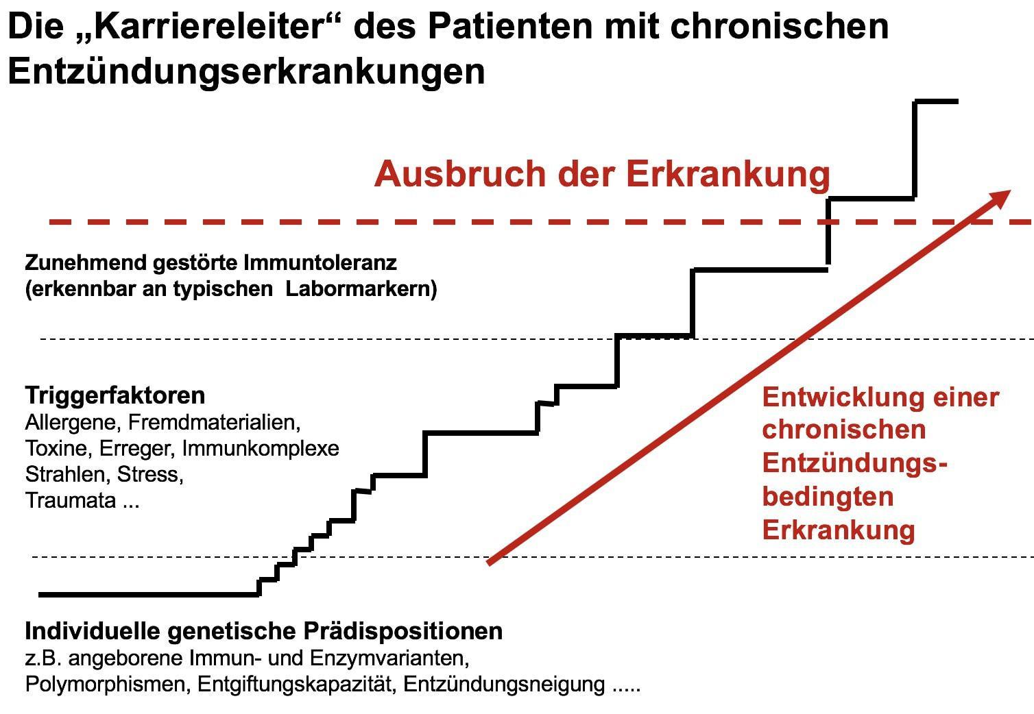 Zahnarzt in St.Gallen Karriereleiter bei chronischen Entzündungen